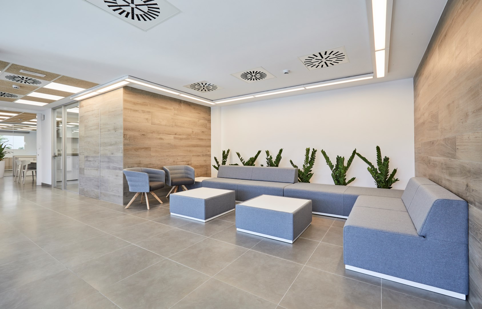 Proyecto dr schneider oficines muebles de oficina en for Proyecto oficina